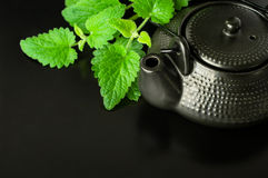 Chinese style tea with mint Royalty Free Stock Images