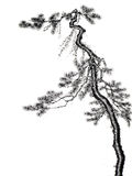 Chinese Style Tree Ink Brush Drawing Stock Photo