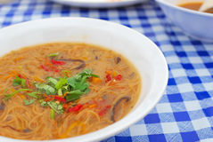 Chinese style vegetarian noodles Royalty Free Stock Photo