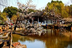 Chinese Suzhou Classical Gardens Royalty Free Stock Image