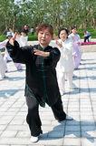 Chinese tai chi Royalty Free Stock Photos