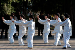 Chinese Taiji. A group of people play Taiji in a park Royalty Free Stock Images