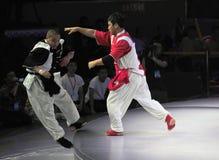 Chinese taiji kung fu game Royalty Free Stock Image