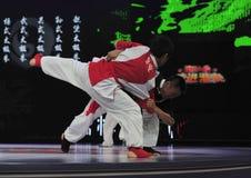 Chinese taiji kung fu game Royalty Free Stock Photo