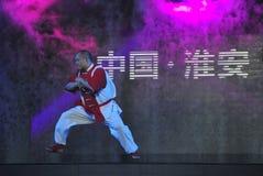 Chinese taiji kung fu game Royalty Free Stock Photos