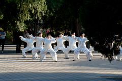 Chinese Taiji players. A group of people play Taiji in a park Stock Photos