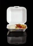 Chinese Take-Away Food Stock Image