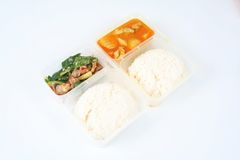 Chinese take away food 3. Container of chinese take away food Royalty Free Stock Photography