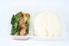 Chinese take away food 4. Container of chinese take away food Royalty Free Stock Images