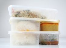 Chinese take away food. Container of chinese take away food Royalty Free Stock Photo