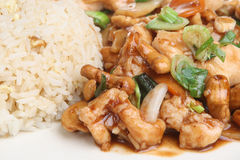 Chinese Takeaway Meal. Chinese chicken with cashew nuts and egg fried rice Stock Image