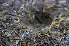 Chinese tea brick Stock Images