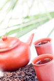 Chinese tea in clay cup close up. With tea set and chinese tea background Royalty Free Stock Photo