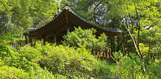 Chinese tea garden with pagoda stock image
