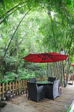 Chinese tea house with red umbrella. Chinese tea house in the bamboo forest royalty free stock photo