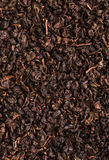 Chinese tea leaf closeup Royalty Free Stock Photos