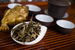 Chinese tea in a cup on a wooden desk. Chinese ceremony with different type of tea Stock Photo