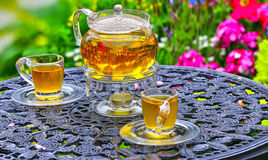 Chinese tea on table in a garden Stock Photo