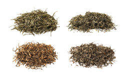 Chinese teas Stock Image