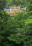 Chinese temple in the forest Stock Photography