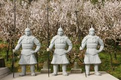 Chinese terra cotta warriors Stock Images