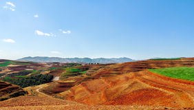 Chinese terrace farm with red soil Stock Image