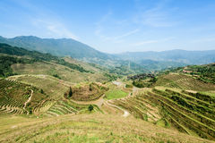 Chinese terraced fields landscape Stock Photos
