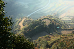Chinese terraces in sunlight Stock Photos