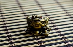 Chinese toad on bamboo mat royalty free stock photo