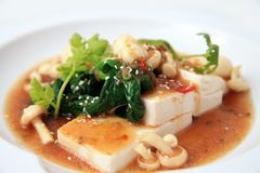 Chinese tofu with xo sauce Stock Photography