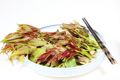 Chinese Toon 2. The young leaves of T. sinensis (Chinese Toon) are extensively used as a vegetable in China; they have an onion-like flavour Stock Photo