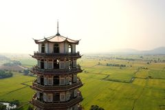 Chinese tower style with rice field Stock Photo