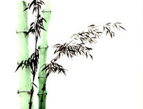 Chinese traditional distinguished gorgeous decorative hand- bamboo sketch. Chinese traditional distinguished gorgeous decorative hand-China, ink, bamboo sketch Royalty Free Stock Photography