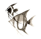 Chinese traditional distinguished gorgeous decorative hand-painted ink-angel fish angelfish. Chinese traditional distinguished gorgeous decorative hand-painted Stock Images