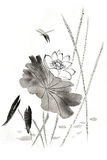 Chinese traditional distinguished gorgeous decorative hand-painted ink-water lily. Lotus Royalty Free Stock Photography