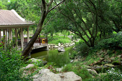 Chinese traditional garden. At day in hong kong Stock Photography