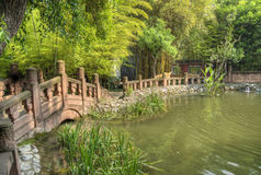A chinese traditional garden. In china royalty free stock photography