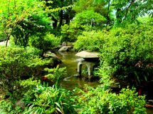 Chinese traditional garden. With lake Stock Photos