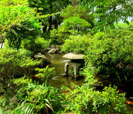 Chinese traditional garden. And lake Stock Photo