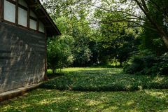 Chinese traditional house in verdant green of sunny autumn Royalty Free Stock Photography