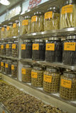 Chinese traditional medicine. Rows of chinese traditional medicine stock photography