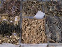 Chinese Traditional Medicine - Squid,Sea Horse,Lizard etc Stock Photo