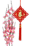 Chinese traditional ornaments and plum blossom Stock Images