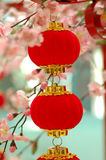 Chinese traditional red lantern 2. Chinese red lantern with colourful decoration Royalty Free Stock Photo