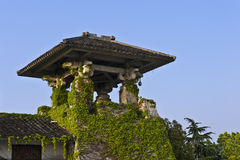 Chinese traditional roof with ivy Royalty Free Stock Photo