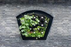 Chinese traditional window Stock Image