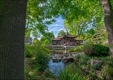 Chinese tuin in Frankfurt Stock Afbeeldingen
