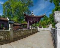 Chinese tuin in Frankfurt Royalty-vrije Stock Fotografie