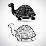 Chinese turtle Stock Photos
