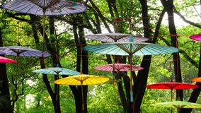 Chinese umbrellas no.1 Royalty Free Stock Images